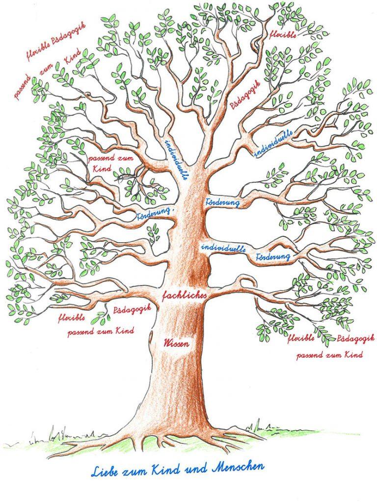 Kompetenzbaum der Volksschule Tribuswinkel